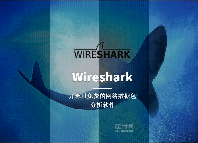 Wireshark.jpg